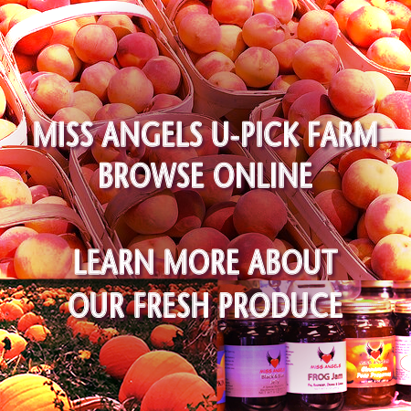 Miss Angels U-Pick Farm